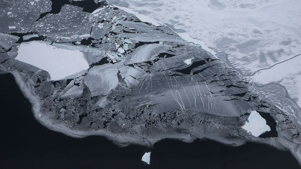 Every year the Antarctic sheds around 2,000 billion tons of ice - more than the total global consumption of freshwater (Credit: Getty Images)