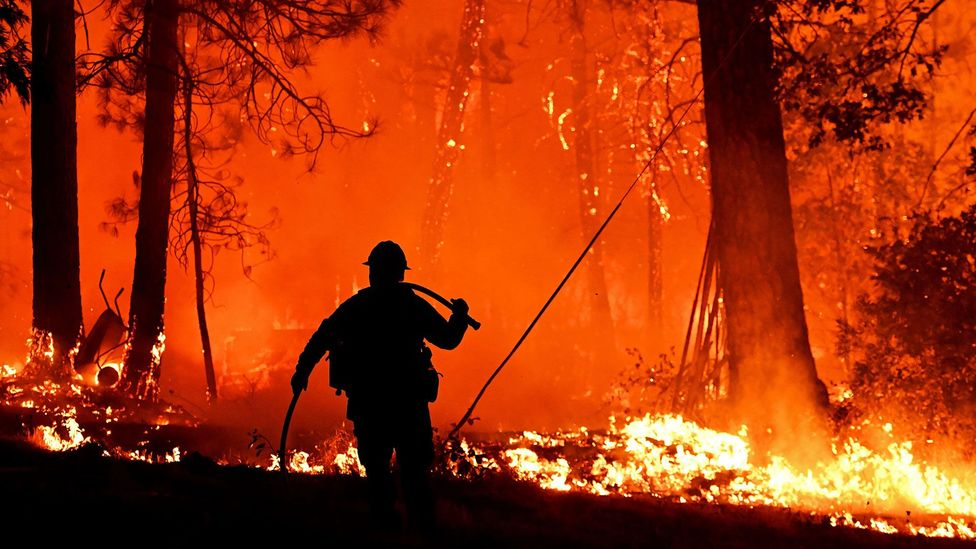 The quest to predict – and stop – the spread of wildfires - BBC Future