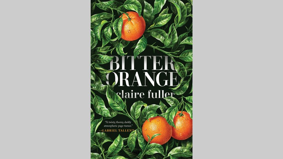 Claire Fuller, Bitter Orange