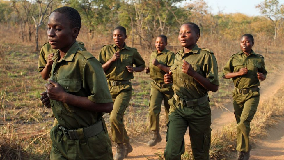 The rangers chose the name 'Akashinga', which means 'the Brave Ones' in Shona (Credit: Rachel Nuwer)