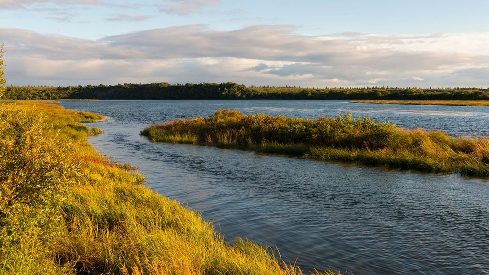 The villages on the Naknek River of Alaska were hard hit by the sudden arrival of the flu (Credit: Getty Images)