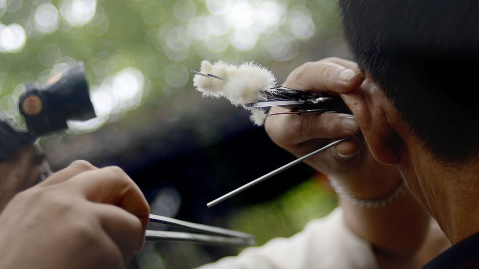 Many Chengdu residents believe that ear cleaning improves health by stimulating acupressure points in the ear (Credit: WANG ZHAO/Getty Images)