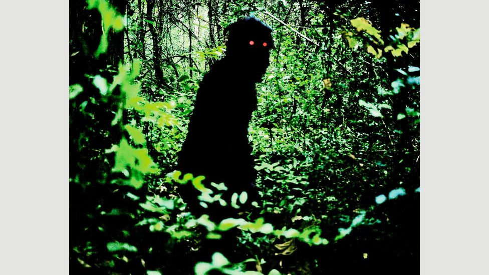 Uncle Boonmee Who Can Recall His Past Lives (2010), Apichatpong Weerasethakul – Thailand