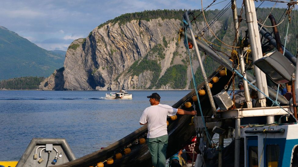 The screech-in ceremony is closely tied to Newfoundland's fishing history and traditions (Credit: Reimar/Alamy)