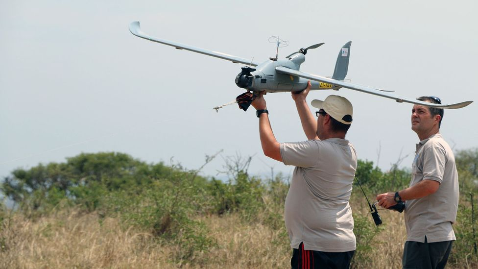 Drones have had mixed success at combatting poaching but artificial intelligence may be changing that (Credit: Alamy)