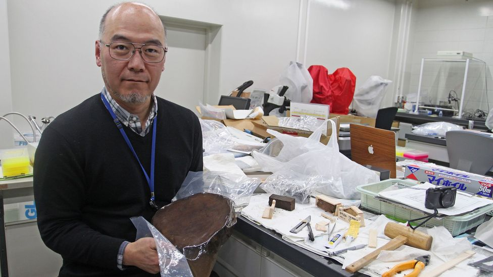 Palaeoclimatologist Takeshi Nakatsuka is using information preserved inside ancient tree stumps to learn about Japan's climate in the past (Credit: Rachel Nuwer)