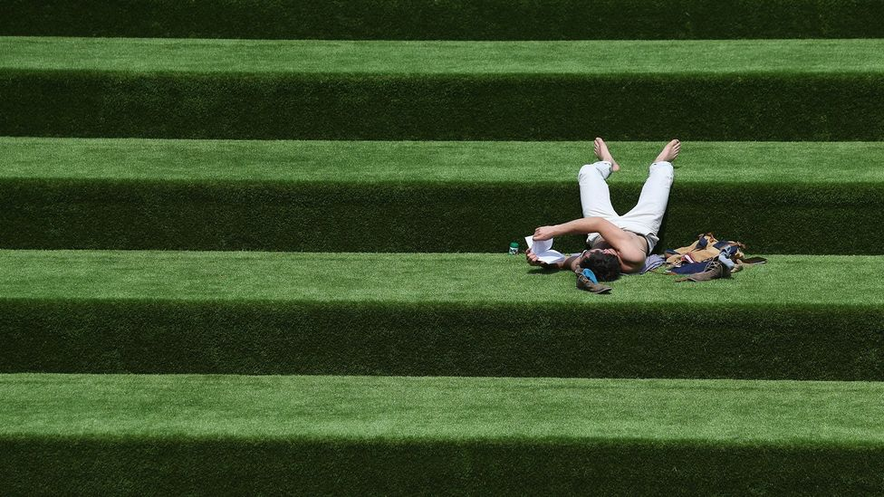 Man reading on grass Getty Images 173221534