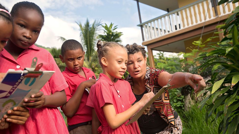 Seychelles schools offer clubs which teach children about sustainability. We're more likely to take climate action if we're around other people who are (Credit: Creative Commons)