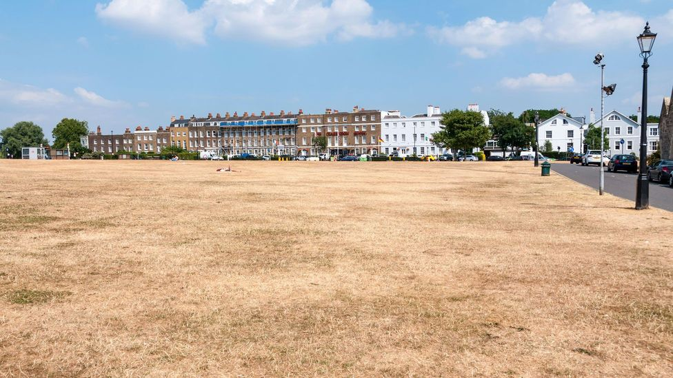 London has suffered a series of serious droughts in recent years (Credit: Alamy)