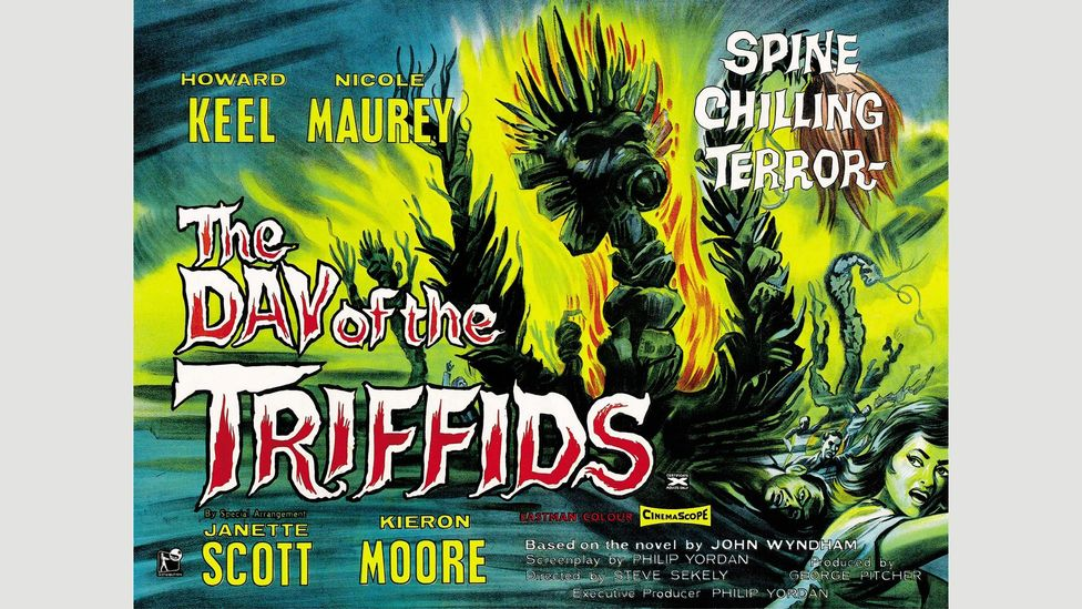 """Brian Aldiss described John Wyndham's The Day of the Triffids as a """"cosy catastrophe"""" (Credit: Alamy)"""