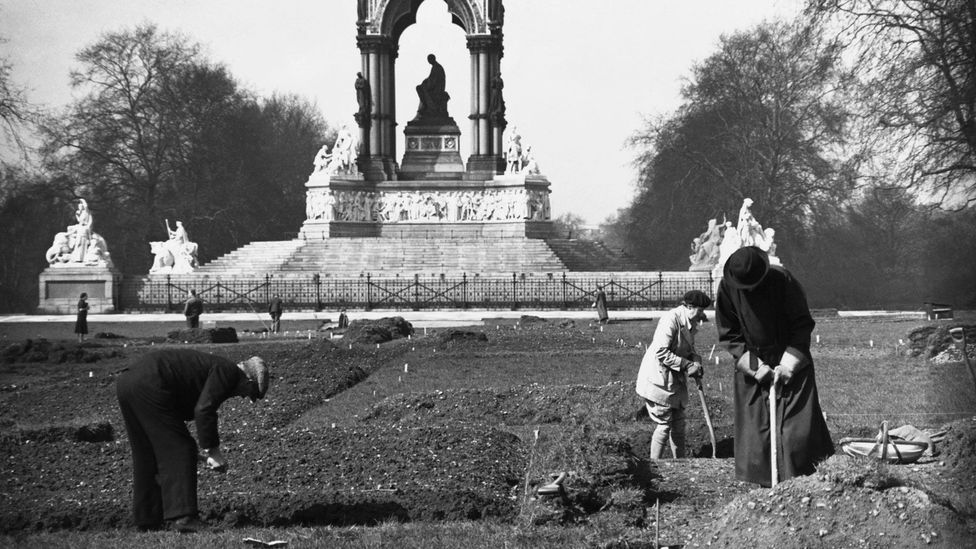 The royal parks in London were turned into allotments to allow people to grow food at the height of the World Wars (Credit: Getty Images)