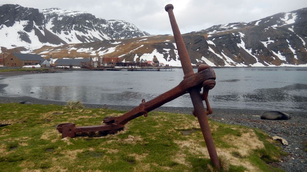 Grytviken, South Georgia's first whaling station, is the site of the island's main settlement (Credit: Shafik Meghji)
