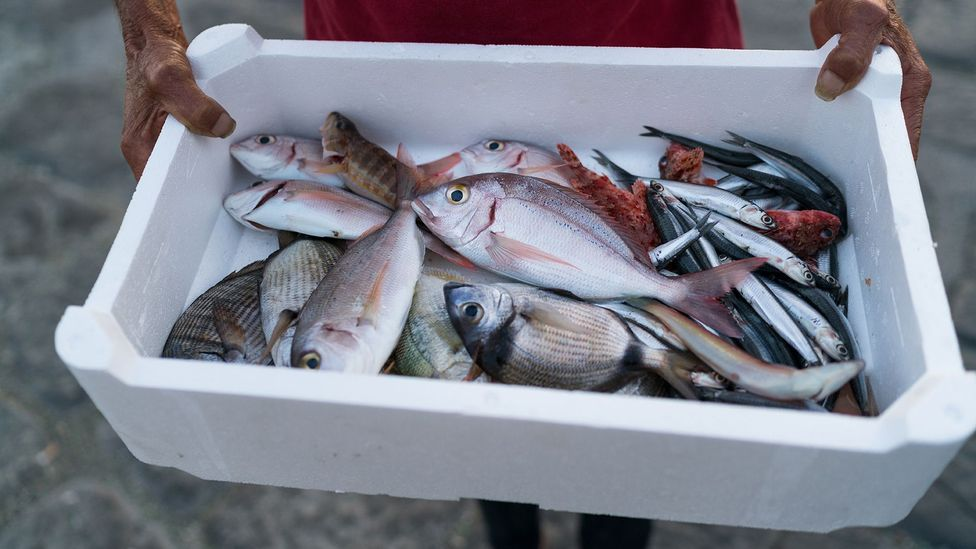 """Shoppers will soon be able to learn the """"story"""" of the fish they are going to eat (Credit: Getty Images)"""
