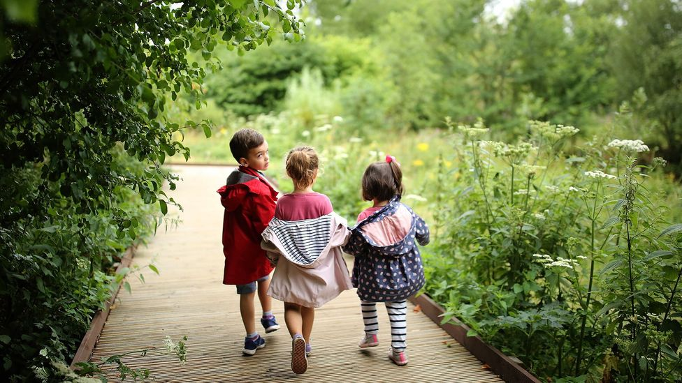 It is important to get children involved with plants early, such as on nature walks, like the one shown here at the Royal Botanical Gardens, Kew (Credit: Getty)