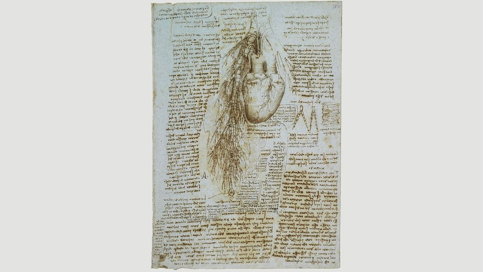 In his studies of the heart and coronary vessels, c 1511-13, Da Vinci refuted the traditional belief that air passes from the lungs directly into the heart