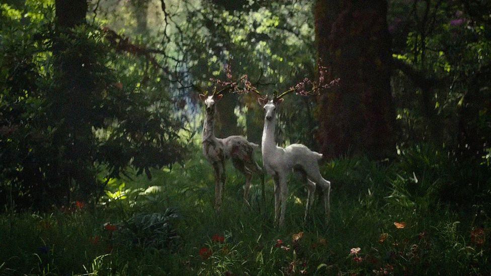 In the movie Annihilation, nature is warped but often strangely beautiful (Credit: Netflix)