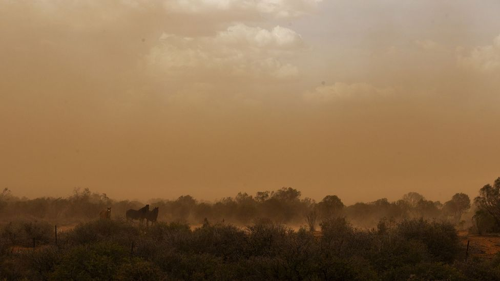 Experiencing a dust storm as a child inspired Peter Andrews to approach agriculture differently (Credit: Getty Images)