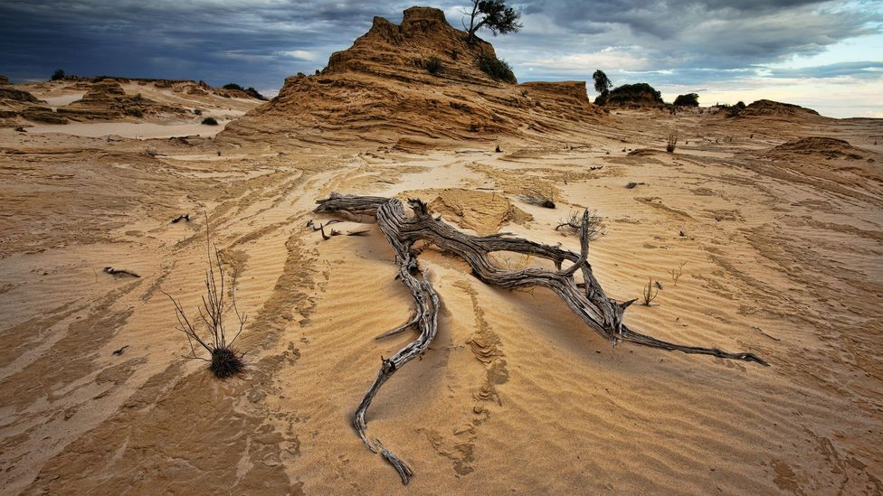 Much of New South Wales and Queensland today are arid (Credit: Getty Images)
