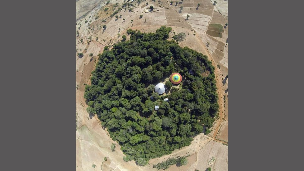 Researchers used photographic records from World War Two and the Cold War to pinpoint the locations of Ethiopia's church forests (Credit: Catherine Cardelús)