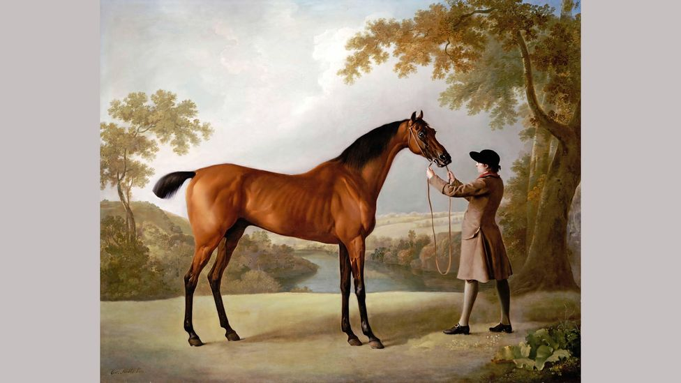 Tristram Shandy was so popular that a racehorse – depicted here in a painting by George Stubbs – was named after it (Credit: Alamy)