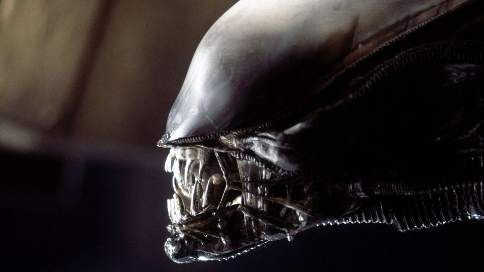 While HR Giger's terrifying demon stole the limelight, another of the film's draws was the Nostromo crew – and their sheer normality (Credit: Alamy)
