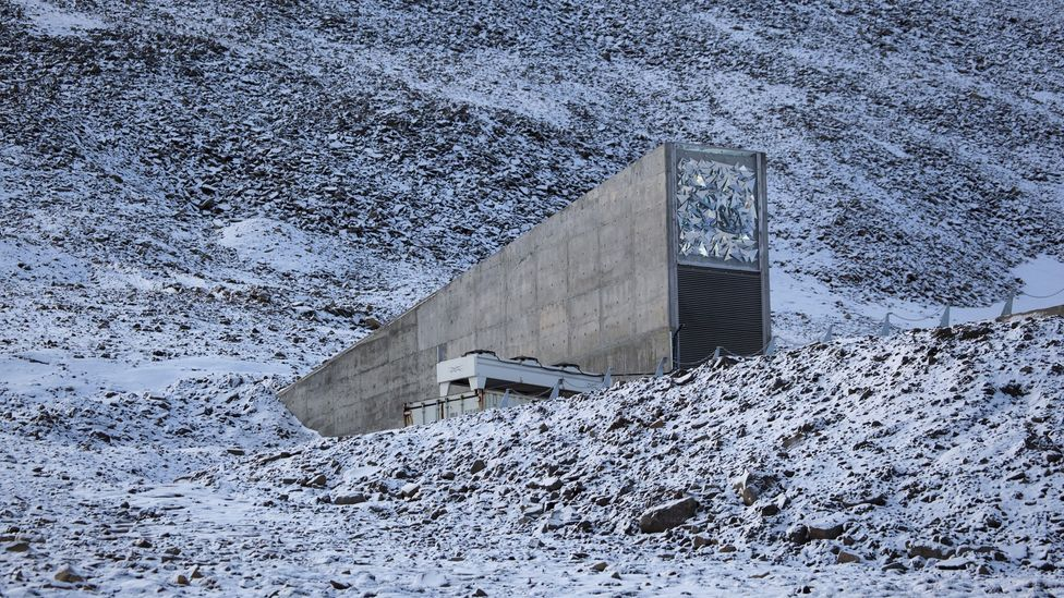 The Global Seed Vault in Svalbard, nestled inside a mountain, can only be rarely visited (Credit: Getty Images)