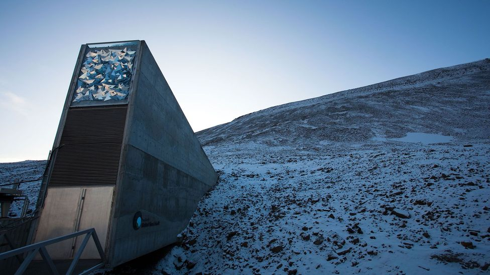 In 2016 the Doomsday Vault – a sub-permafrost facility in Arctic Norway, which safeguards millions of crop seeds for perpetuity – was breached with meltwater (Credit: Alamy)