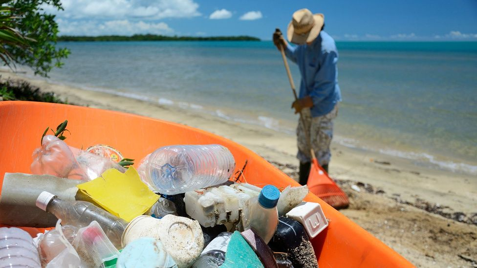 Woman cleaning plastic waste (Credit: Getty Images)