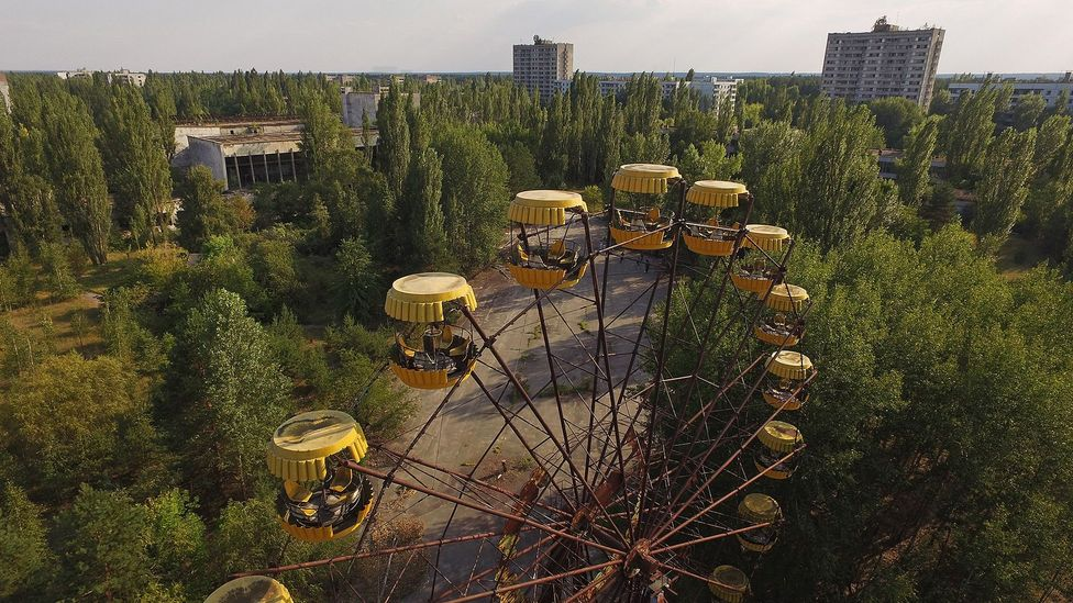 Trees and other vegetation have flourished around Chernobyl even though the area has been uninhabitable for humans (Credit: Getty Images)