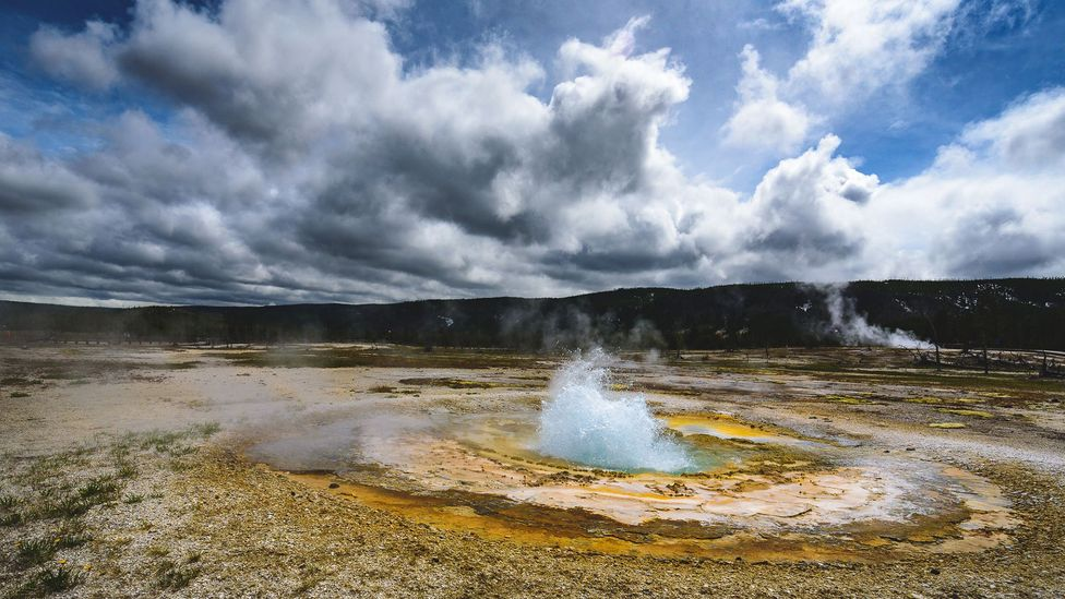 Heat-adapted organisms and microbes living in extreme environments are likely to be less affected by climate change (Credit: Getty Images)