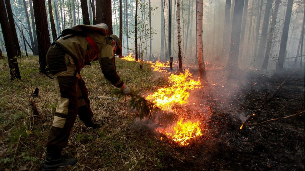Enormous forest fires in the Siberian tundra have threatened nearby settlements while chocking the region with smoke and ash  (Credit: Getty Images)
