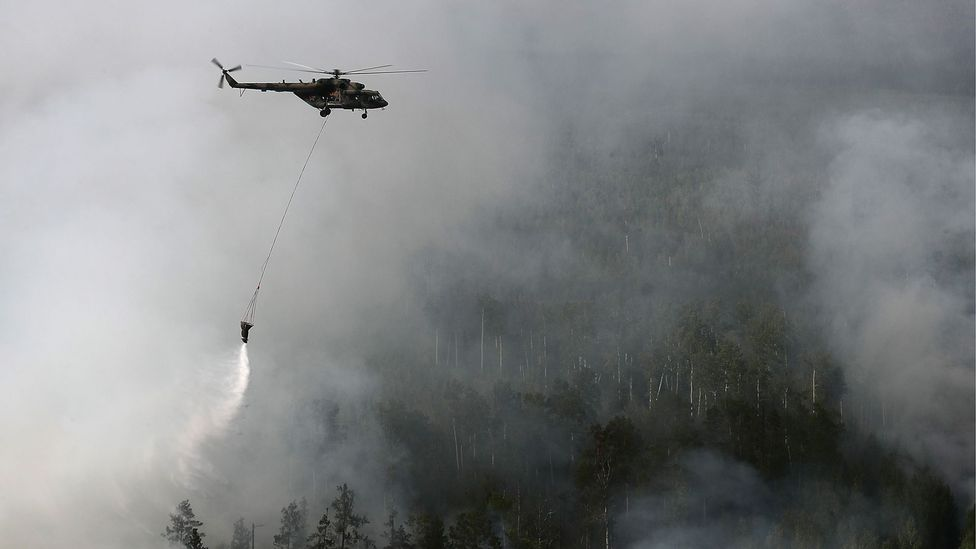 With over one million hectares of forest hit by fires in the Siberian tundra, they have been almost impossible to control them with firefighting (Credit: Getty Images)