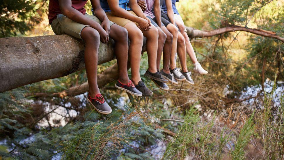 kids sitting tree branch