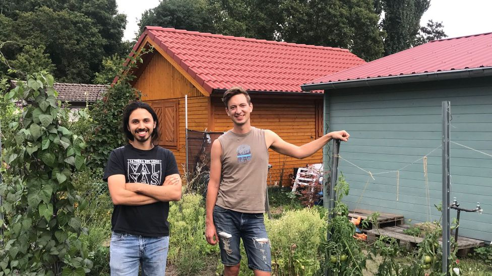 Analysis from The German Institute for Construction, City and Space research around 95% of Germany's one million gardens are now occupied (Credit: Kate Brady)