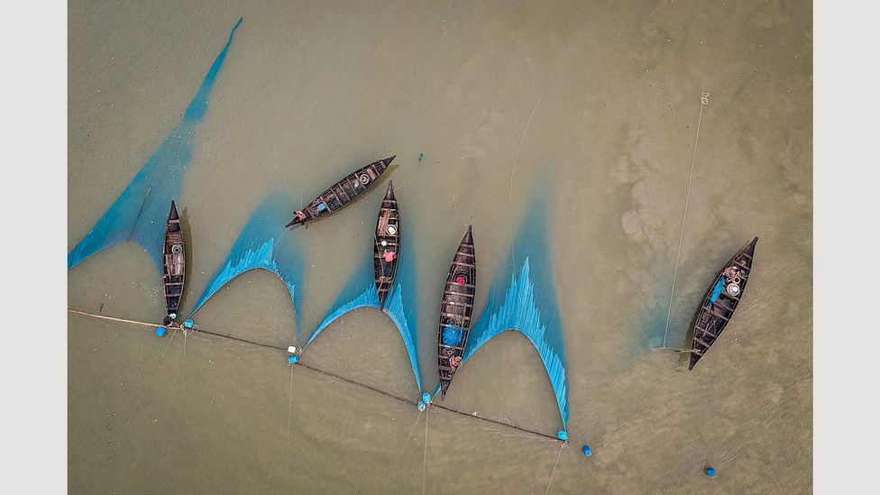 Fishing nets have replaced rice pickers in much of rural Bangladesh (Credit: Ignacio Marin/ Institute)