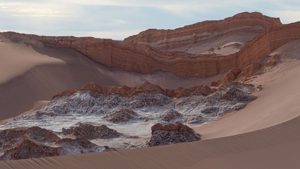 The arid soil of the Atacama Desert was once thought to be unable to support life but scientists have found it is teaming with extreme microorganisms (Credit: Tom Garmeson)