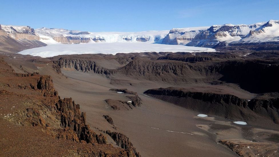 Parts of the McMurdo Dry Valleys in Antarctica have not seen rain for centuries yet scientists are still finding bacteria flourishing in this harsh landscape (Credit: Alamy)