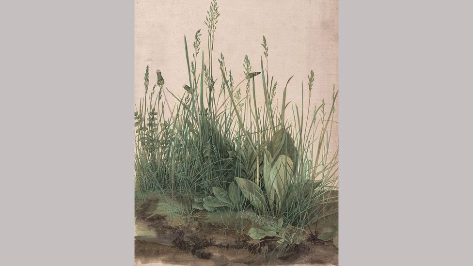 The Great Piece of Turf – Albrecht Dürer (1503); Dürer painted the sprawling roots of the grass, as well as what's above ground
