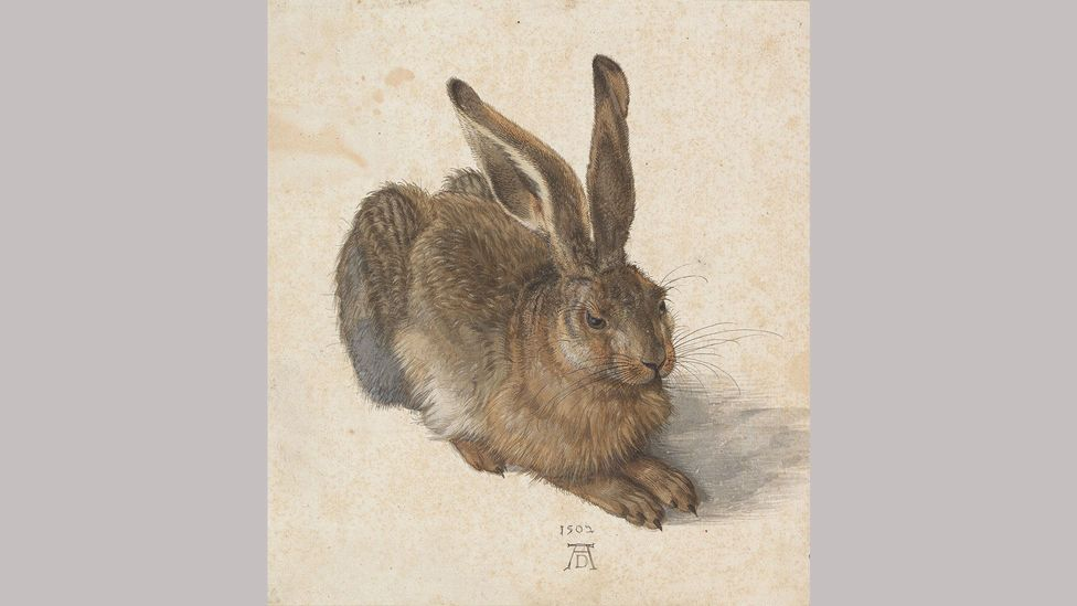 Young Hare – Albrecht Dürer (1502); one of Dürer's most famous works – scholars have pondered how he managed to pose the animal