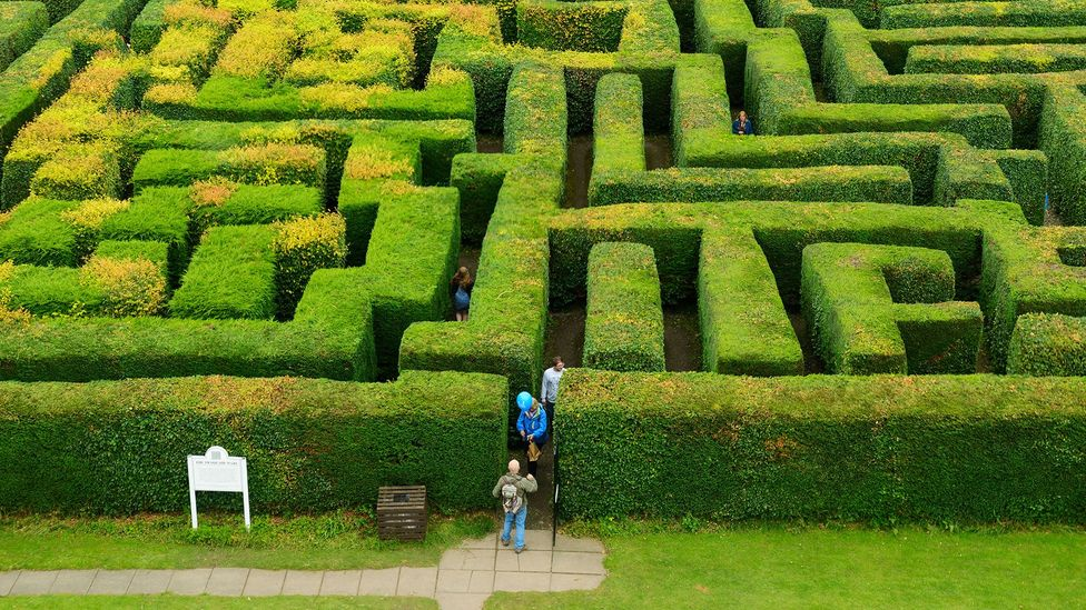 Mazes were a common component in early computer games but programmers found it was easier to generate them randomly rather than store them inside the game (Credit: Alamy)