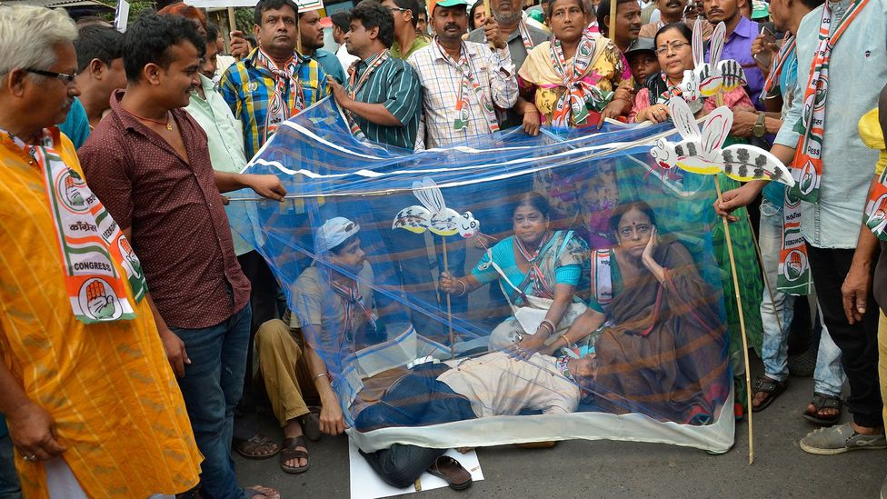 Activists sitting in mosquito nets stage a protest against the spread of dengue in Kolkata, India (Credit: Getty Images)