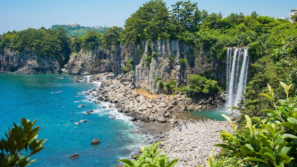 Jeju Island is blessed with beautiful beaches, but its poor, volcanic soil has forced islanders to farm the sea (Credit: hitsujikumo33/Getty Images)