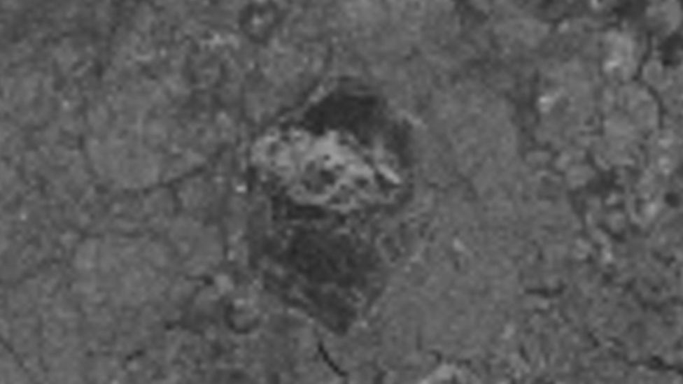The first grainy view of the hexagonal-shaped floe from space, with a central bright patch showing where the ice is thick (Credit: TerraSAR-X/DLR 2019)