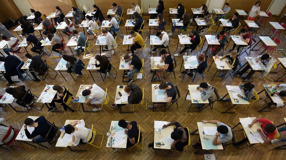 Breda and Napp found that the greater a student's advantage in reading, the less likely they were to plan a career in maths (Credit: Getty Images)