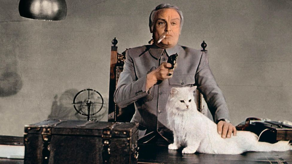 James Bond's arch-nemesis Ernst Blofeld is famous for his white Persian companion (Credit: Alamy)