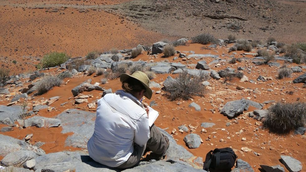 The Namibian landscape is offering tantalising clues as to what the environment was like more than 560 million years ago (Credit: Rachel Wood)