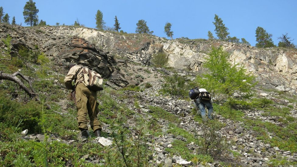 Siberia is another region where painstaking searches can revel time capsules from the distant past (Credit: Rachel Wood)