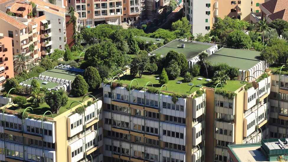 Urban gardening has been reclaiming rooftops and concrete spaces throughout Monaco (Credit: vuk8691/Getty Images)