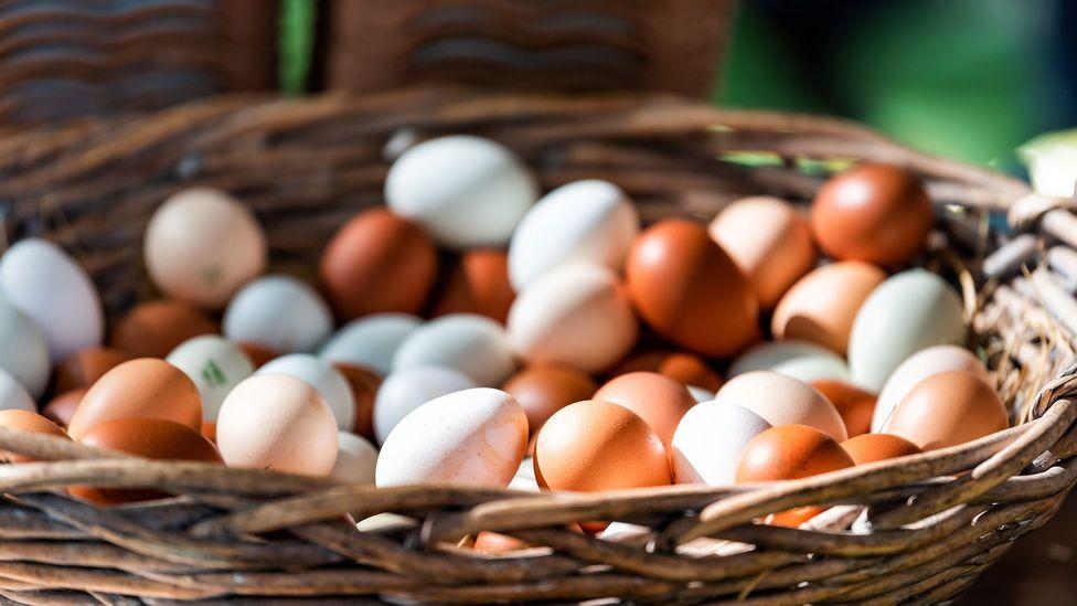 Os ovos são uma importante fonte de vitamina B12, que falta na dieta vegana (Crédito: Getty Images)