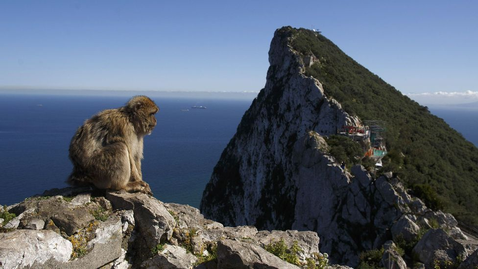 Finlayson says the steep cliffs on Gibraltar have helped to preserve Neanderthal remains (Credit: Getty Images)